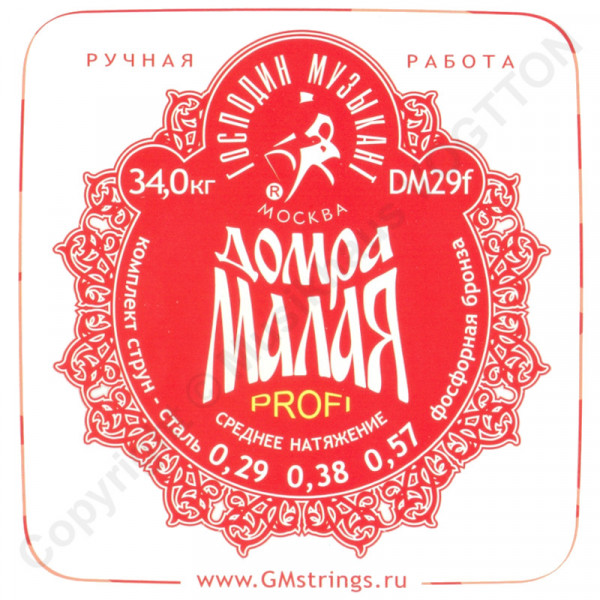 Profi Saitensatz für kleine Domra (Stahl + PB)
